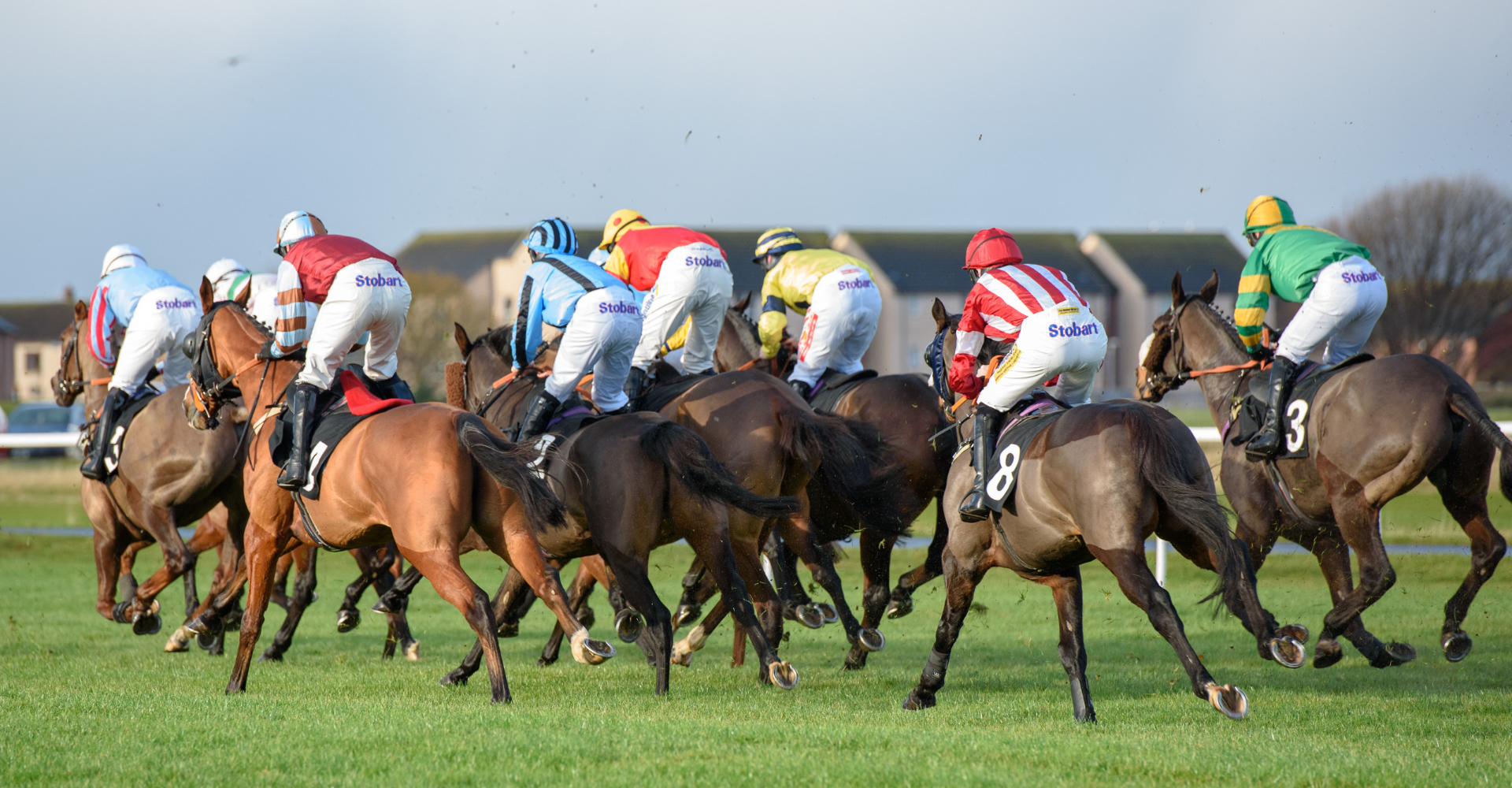 Musselburgh Racecourse Has Been Deemed To Be Safe For Racing And In Excellent Condition Musselburgh Racecourse
