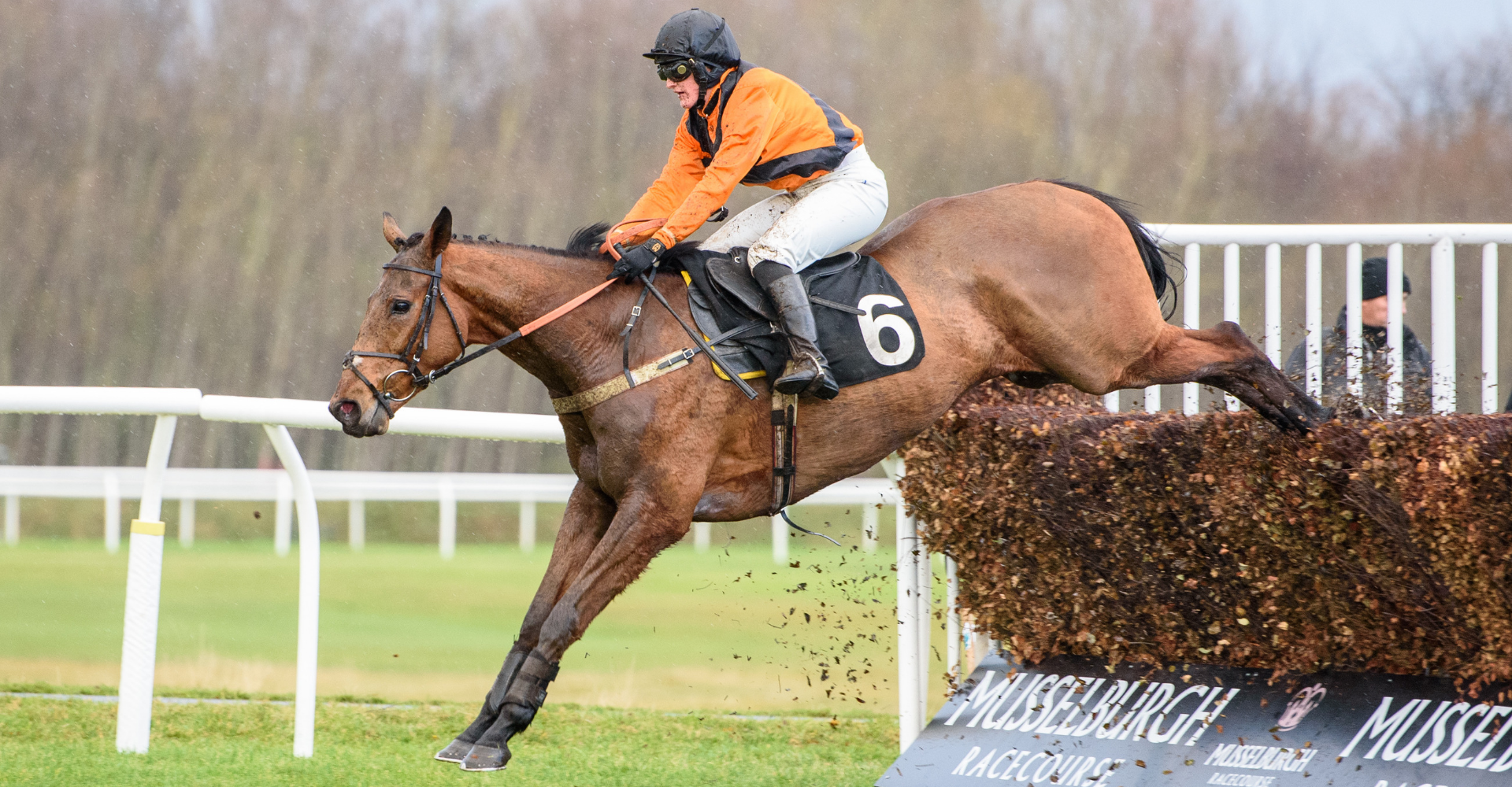 We are naturally disappointed to be losing our richest jumps fixture