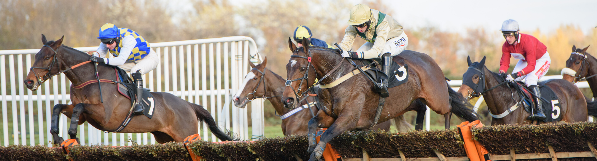 Musselburgh Shapes Up For Start Of National Hunt Season