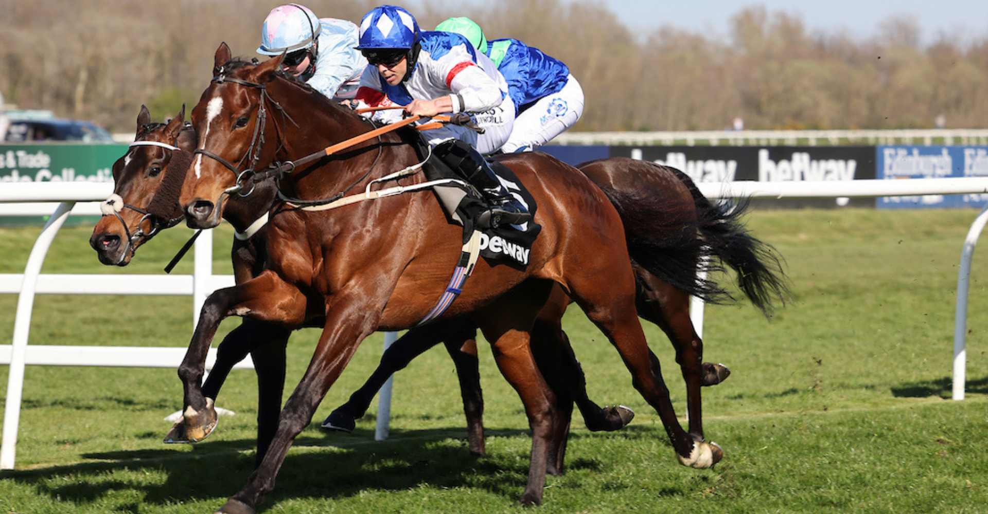 MARK JOHNSTON took Musselburgh by storm